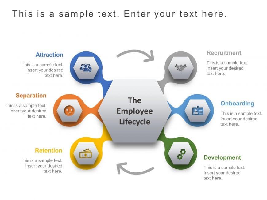 Employee Lifecycle Infographic