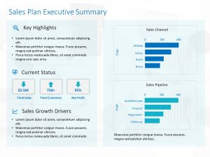 Sales Dashboard Executive Summary Template
