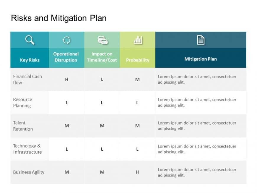 Risk Assessment & Mitigation Plan