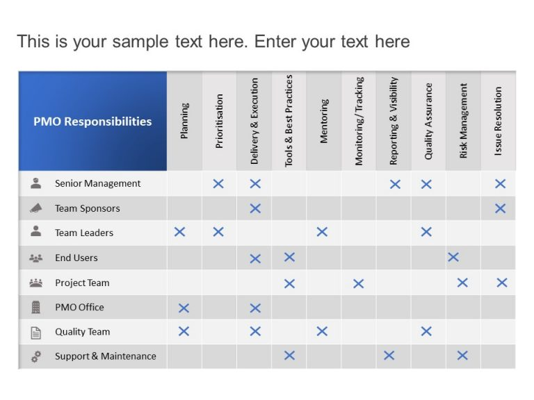 PMO Roles and Responsibilities