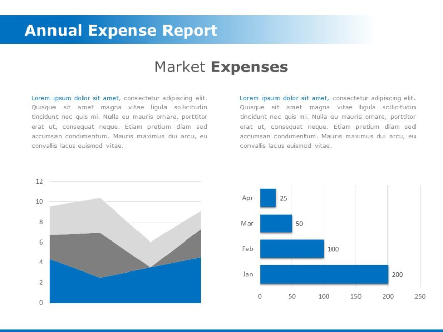 Annual Expense Report 01