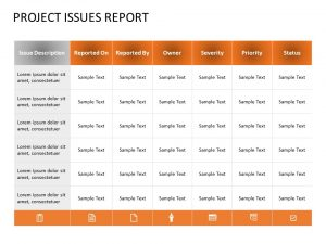 Project Issues Report