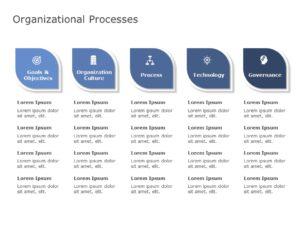 Organization Process