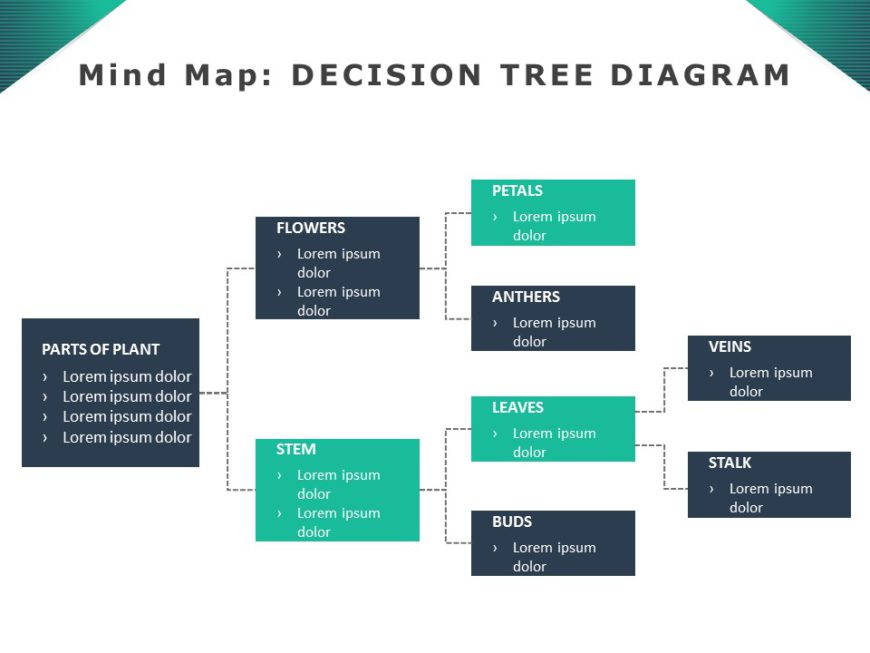 Mind Maps 11