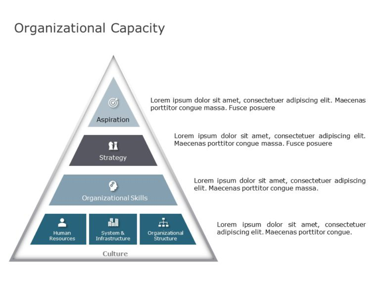 Organizational Structure Overview