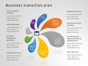Business Transition Plan