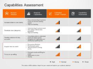 Capability Assessment 01