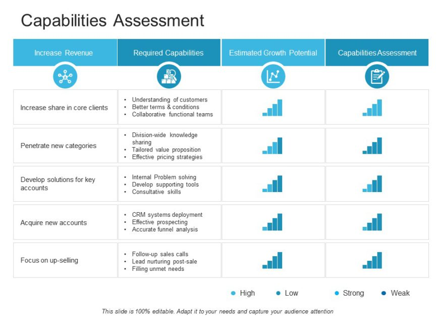 Capability Assessment 02