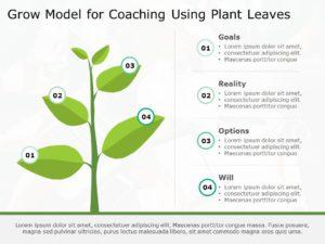 Growth Model 09
