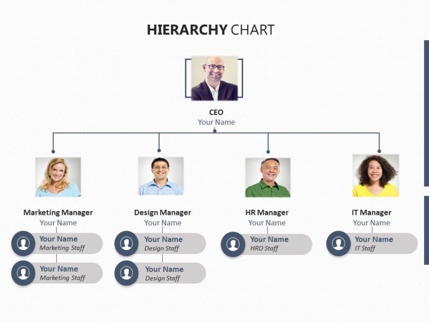 organization chart 01