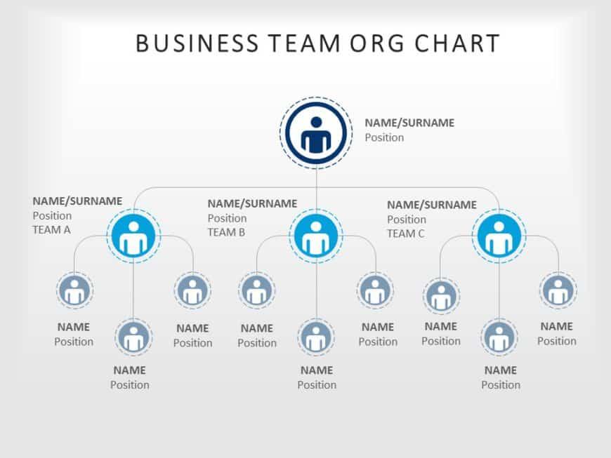 organization chart 04