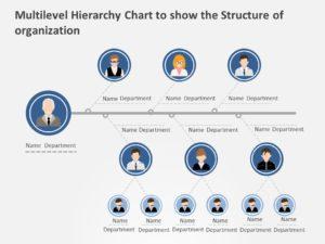 organization chart 05