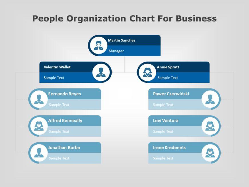 organization chart 06