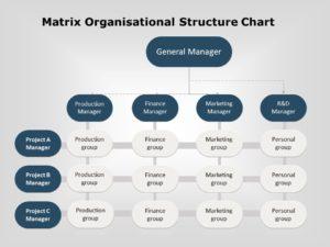 organization chart 07