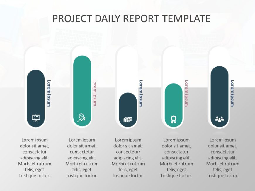 Project Daily Report