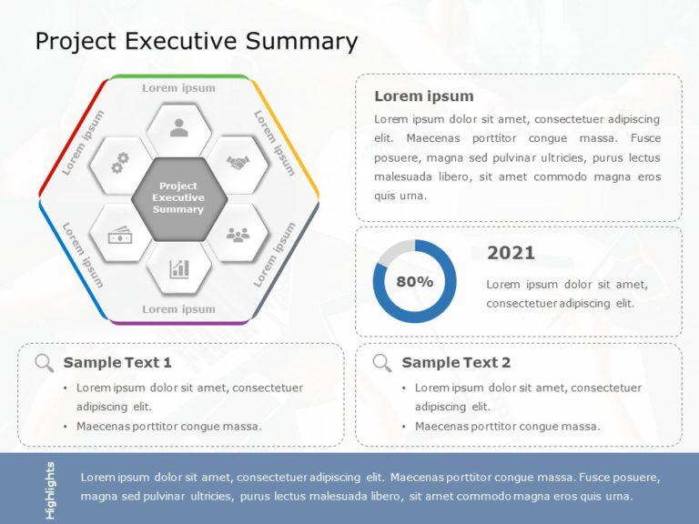 Project Executive Summary 01