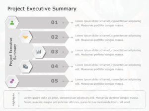 Project Executive Summary 02