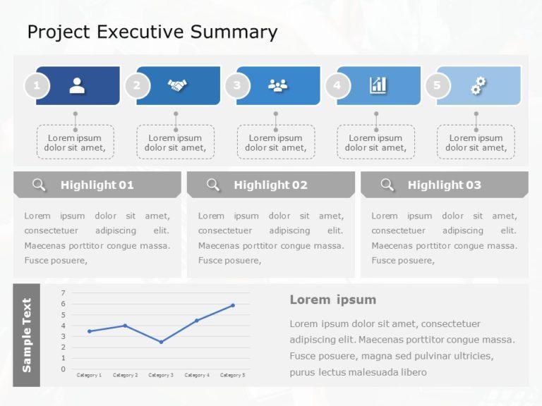 Project Executive Summary 03