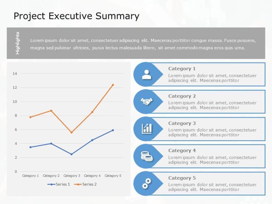 Project Executive Summary 04