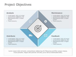 Project Objectives Examples