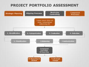 Project Portfolio Assessment