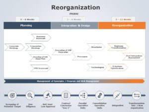 Reorganization 11