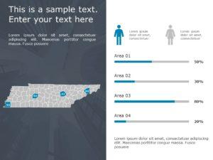 Tennessee Demographic Profile