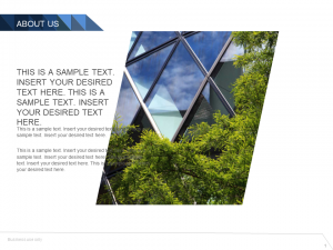About Us Powerpoint Template 1