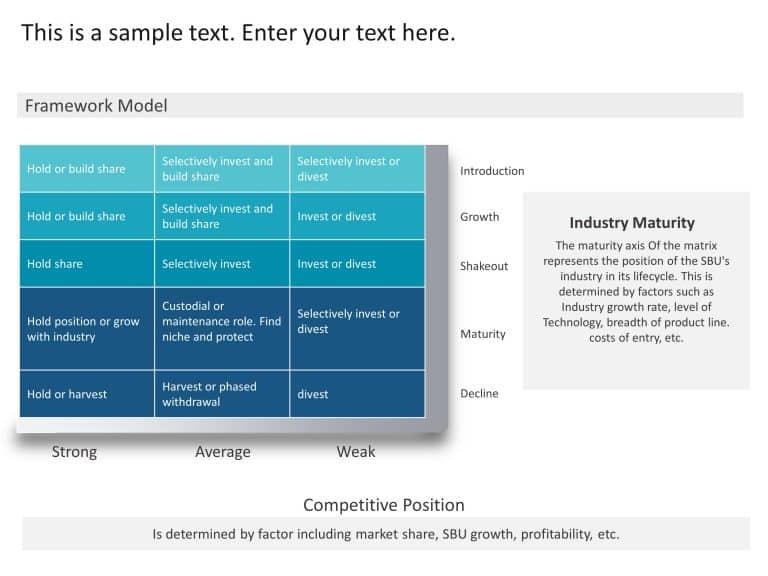 Maturity Competitive Position Matrix