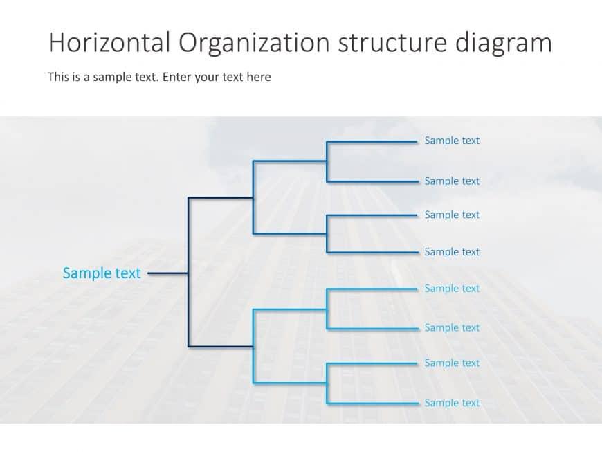 Horizontal Organization Structure Diagram