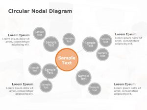 8 Circular Nodal Diagram