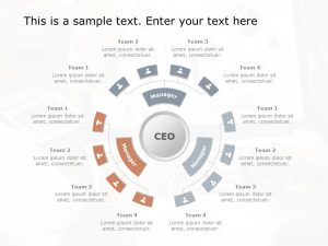 Circular Organization Structure Template