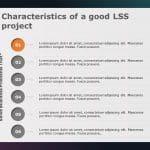 Lean Six Sigma Presentation
