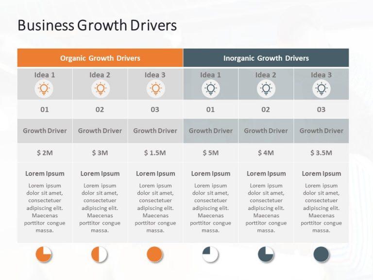 Business Growth Executive Summary