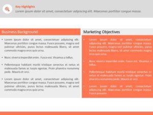 Business Objectives Executive Summary