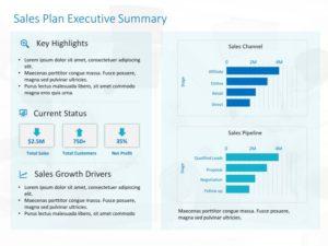 Sales Dashboard Executive Summary Template