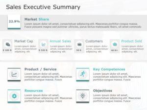Sales Executive Summary Template