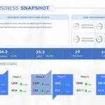 Business Review Presentation 03